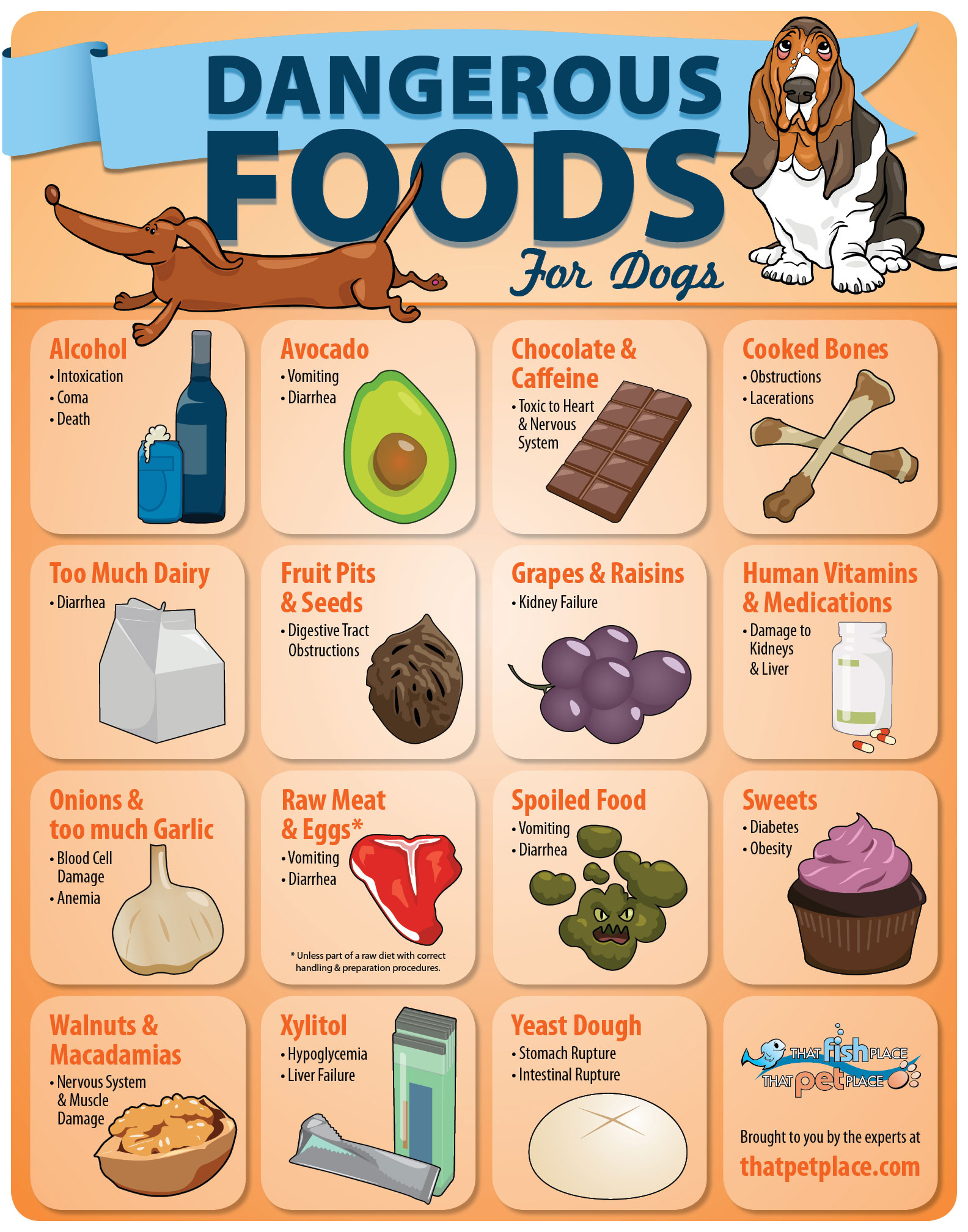 List Of Dangerous Foods For Pets