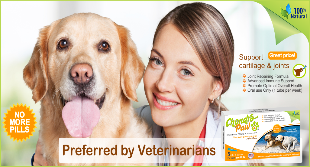 arthritis med for dogs preferred by veterinarians