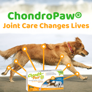 ChondroPaw® Joint Care Change Live