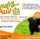 Chondropaw for dogs over 60lbs